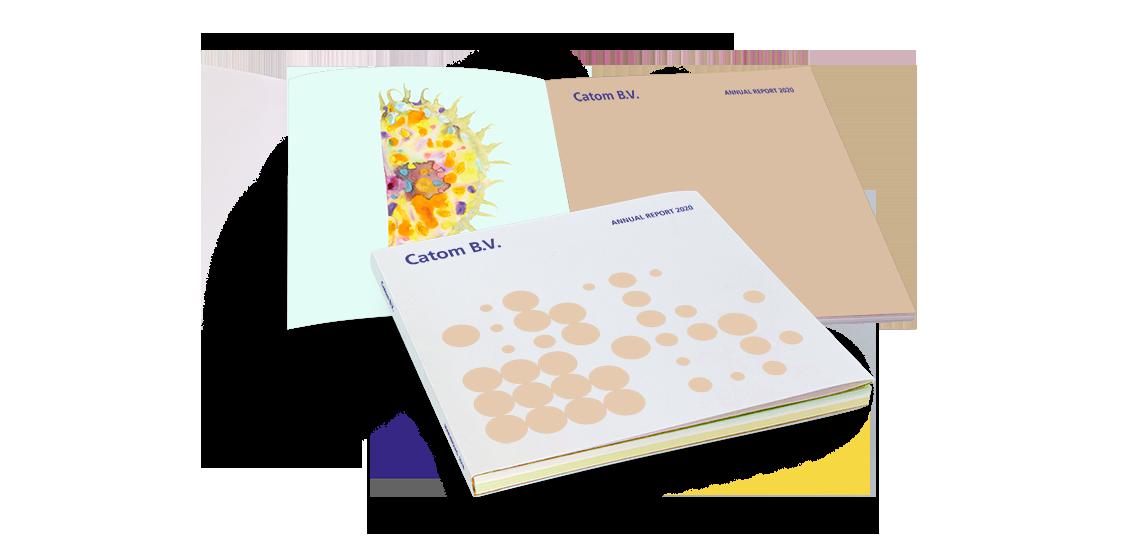 Catom Annual Report 2020